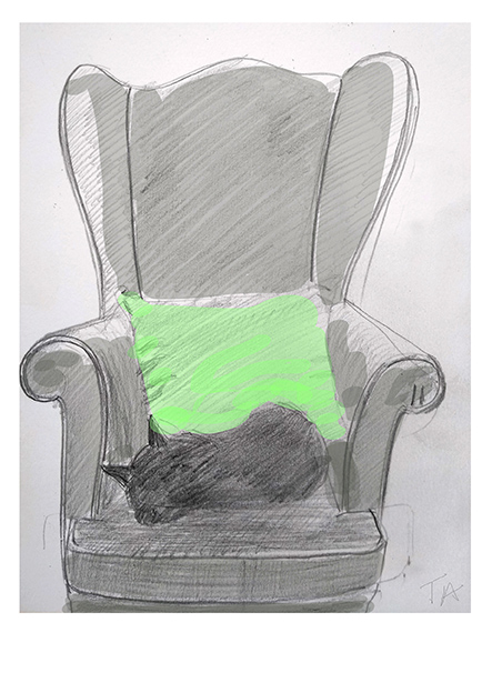 Bamboo on grandad's chair Pencil/paper and colourised